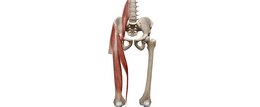 Dolore all'anca - Cause e Sintomi