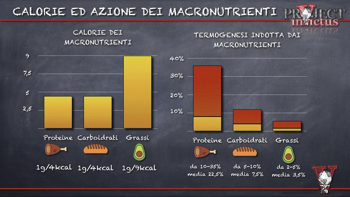 calcolare la percentuale di macronutrienti