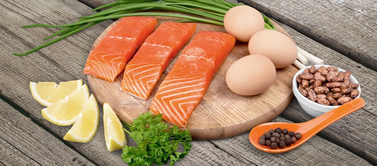 dieta iperproteica fa male