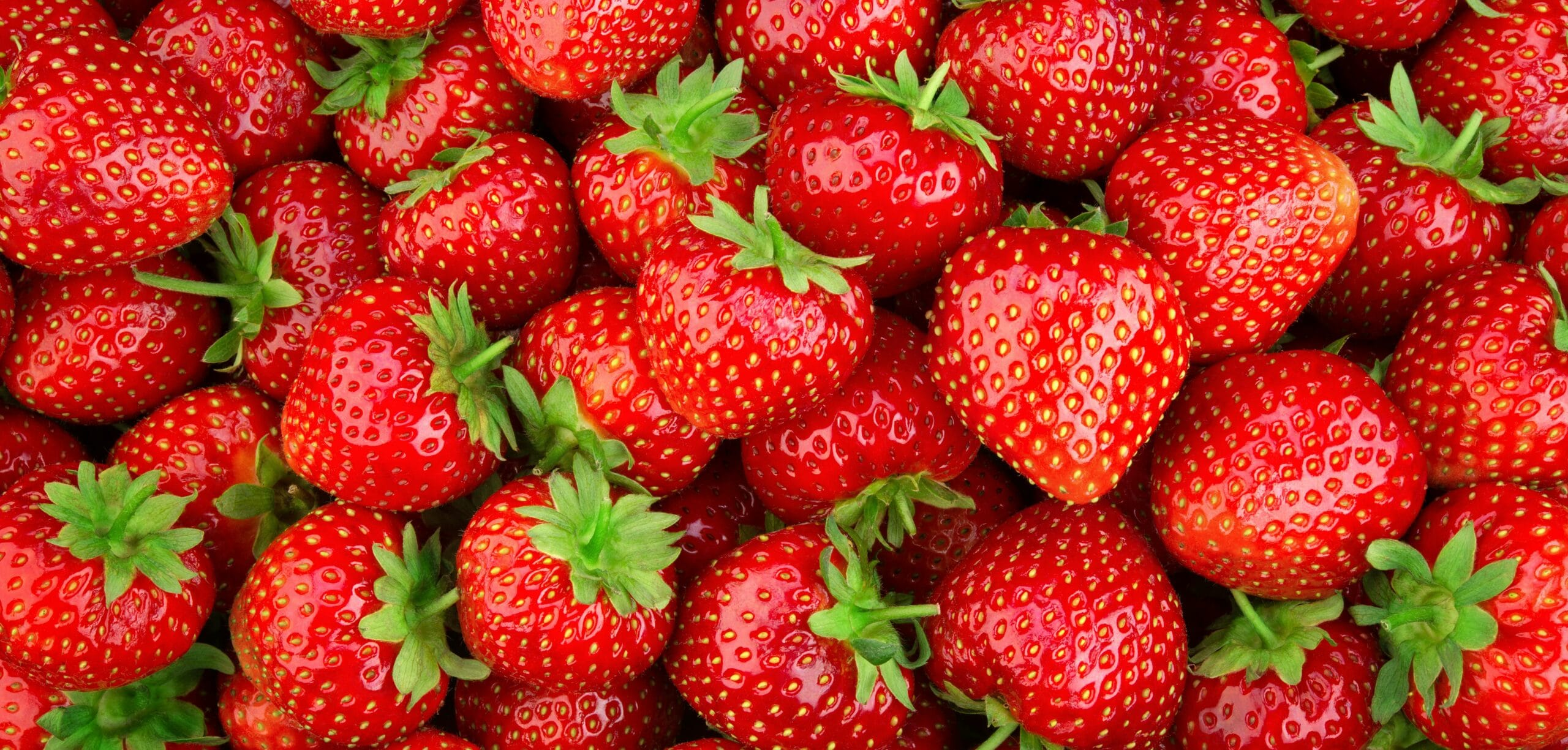fragole benefici e valori nutrizionali nella dieta