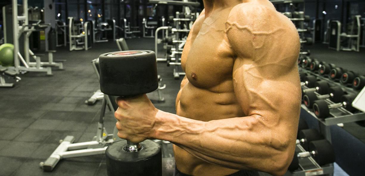 programmazione bodybuilding