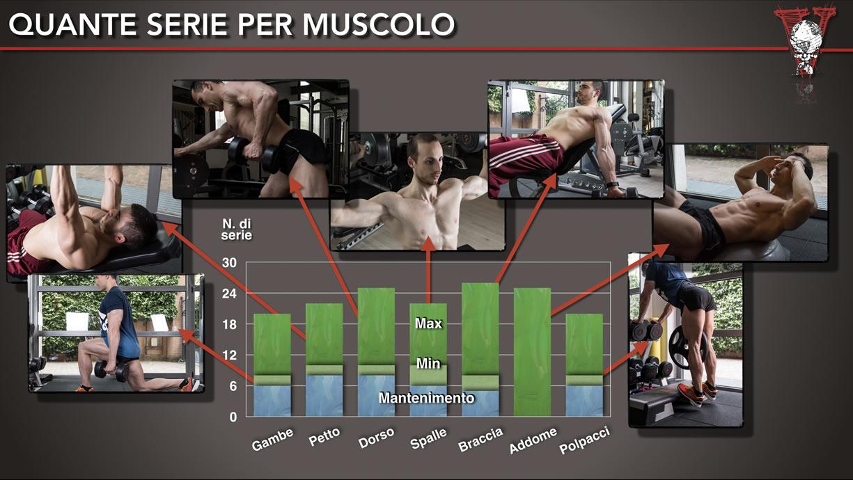 quante serie per gruppo muscolare