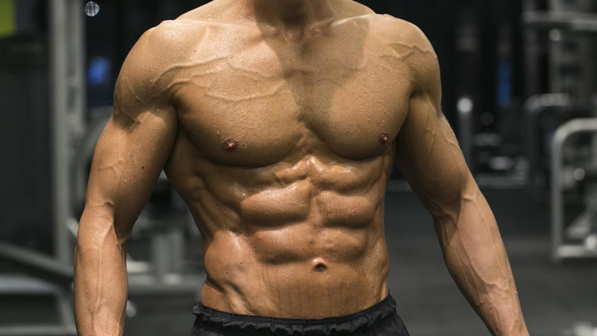testosterone muscoli