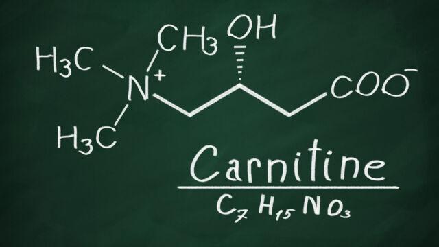 carnitina