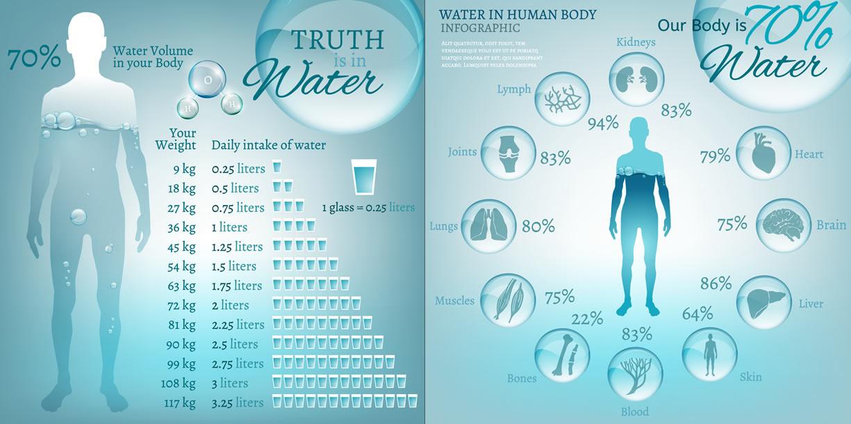 composizione acqua corpo umano