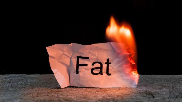 come bruciare il grasso umano