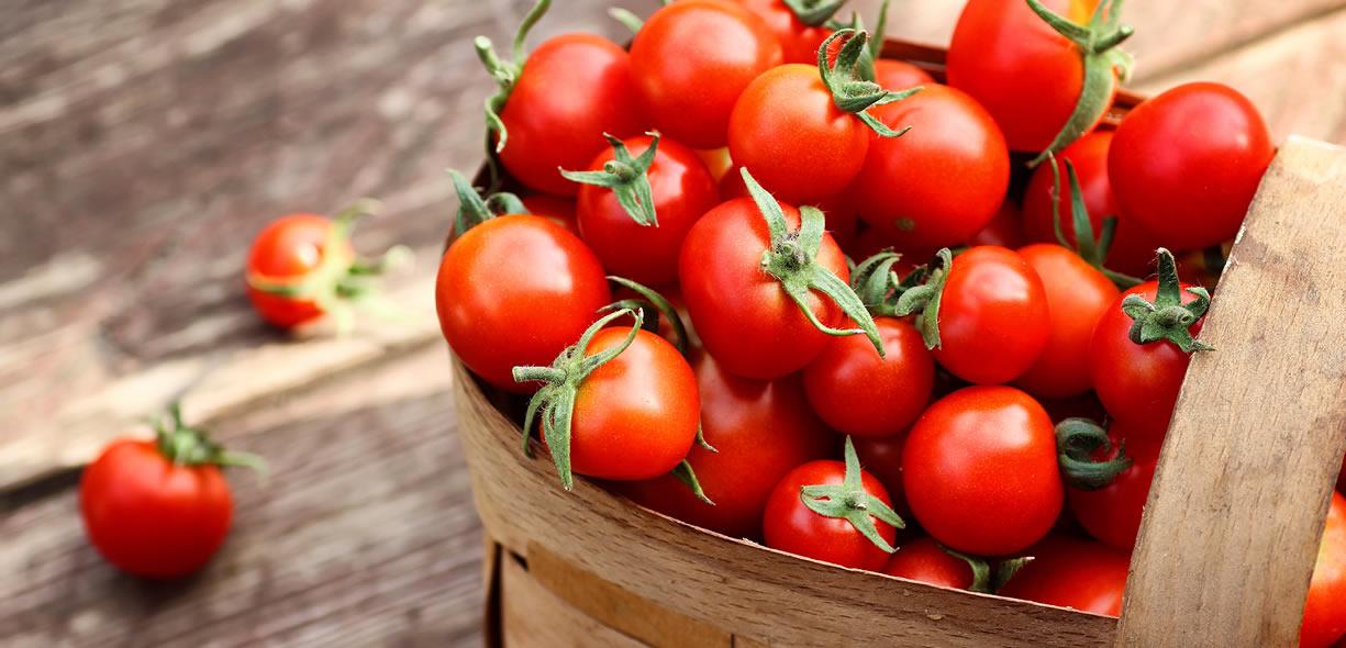 pomodori calorie
