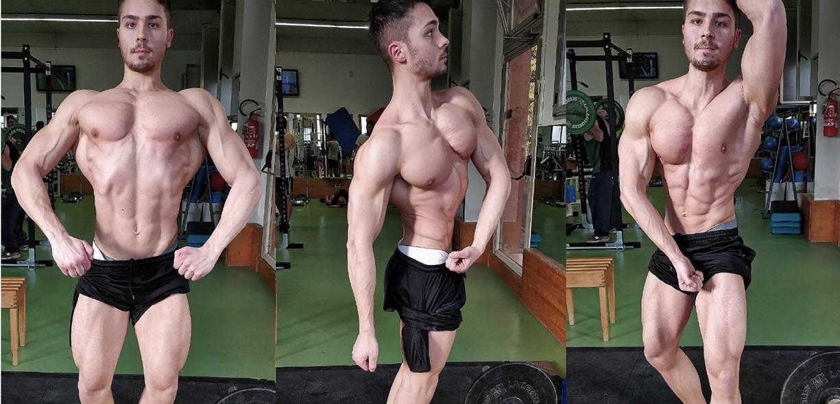 andamento preparazione bodybuilding