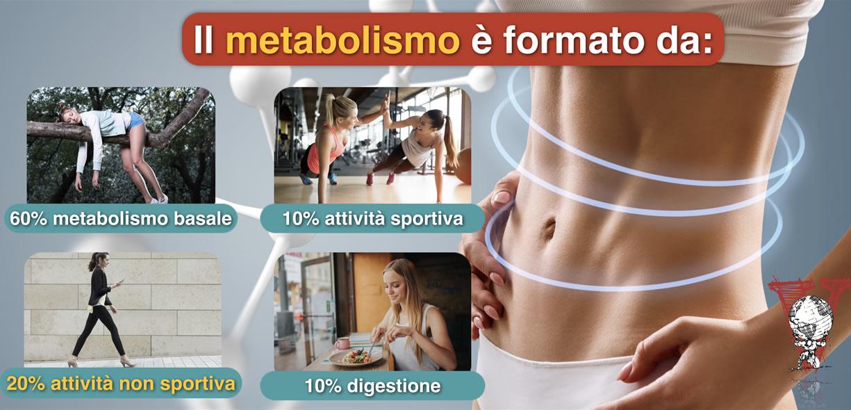 metabolismo e neat