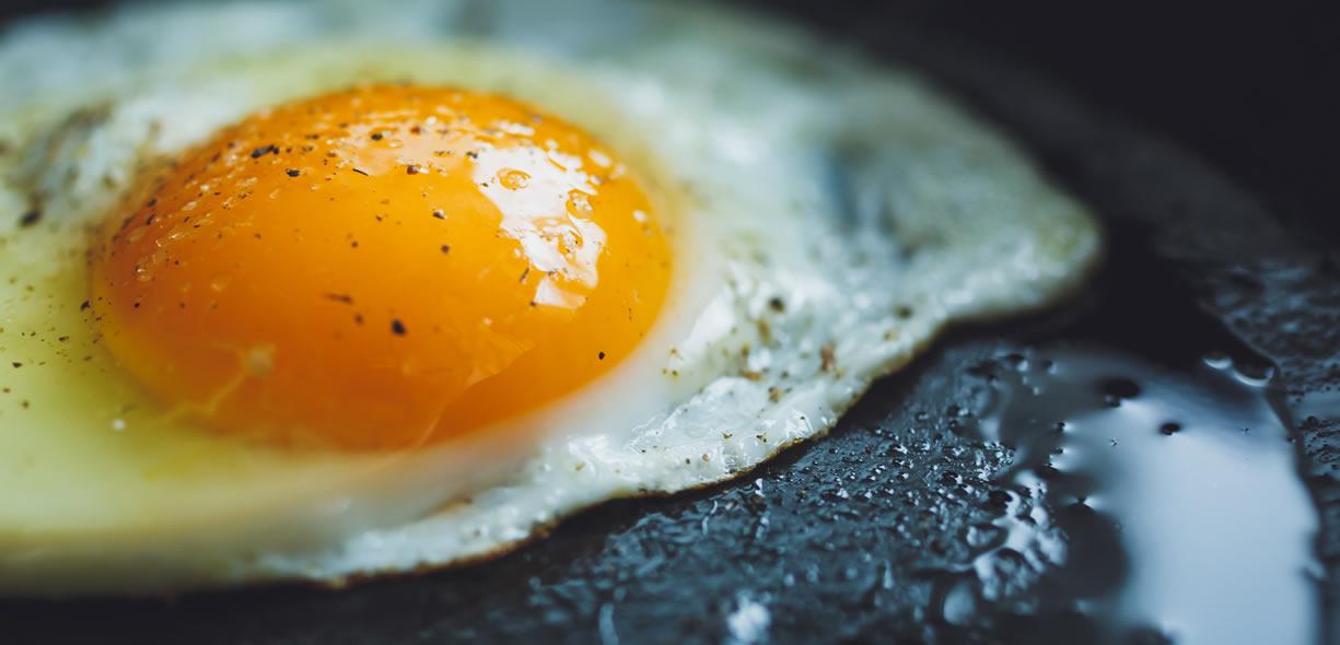 proteine cosa sono e a cosa servono