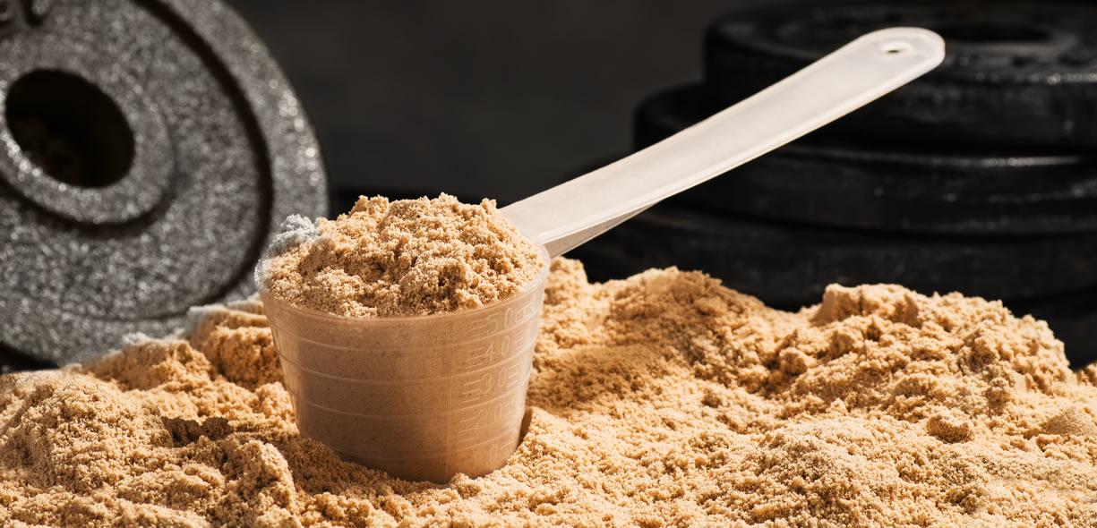 proteine cosa sono e a cosa servono in palestra