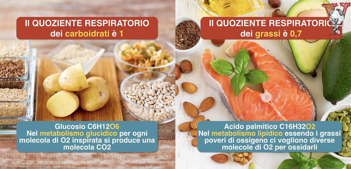 quoziente respiratorio carboidrati grassi
