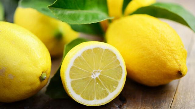 limone valori nutrizionali