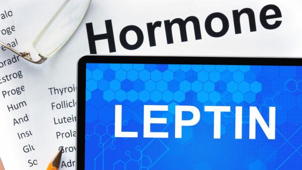 qual è la migliore dieta per dimagrire per l ipotiroidismo