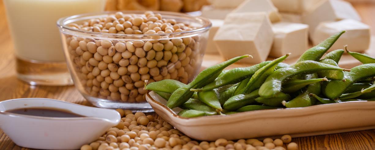 Proteine soia