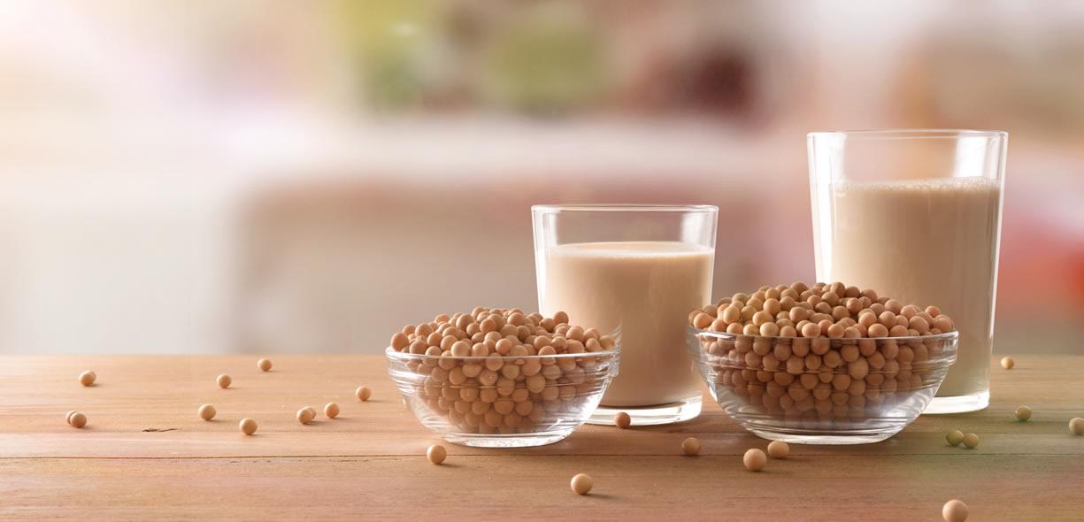 proteine della soia