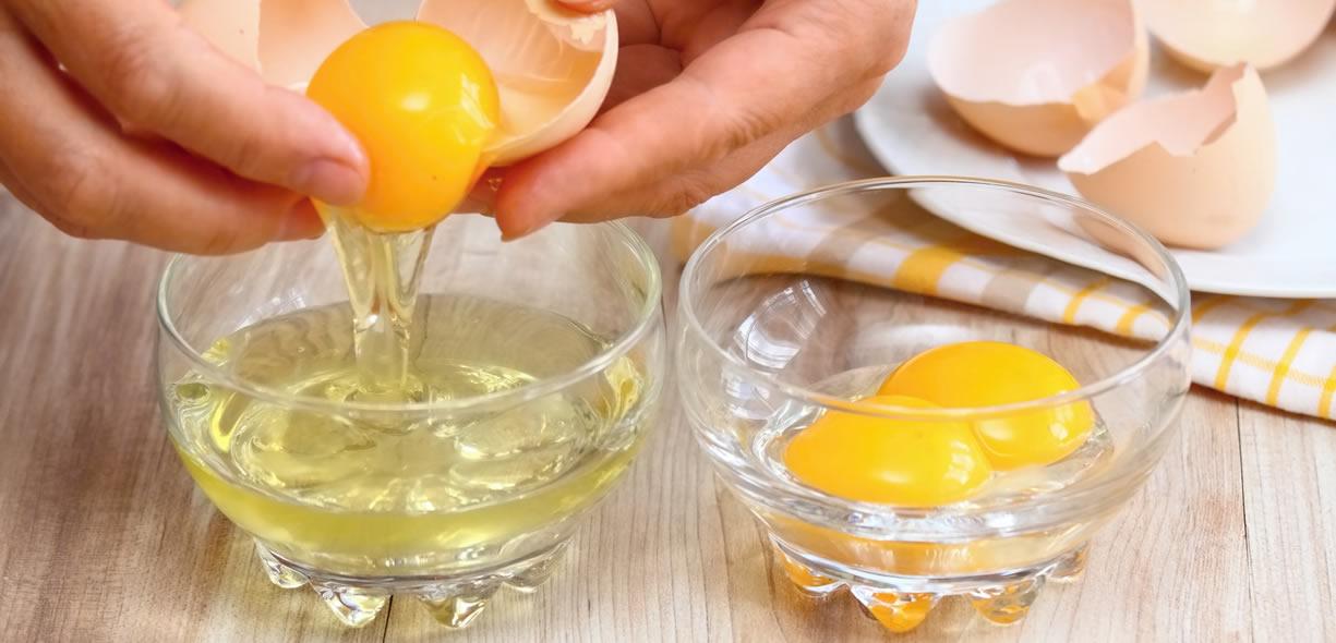 proteine dell'uovo