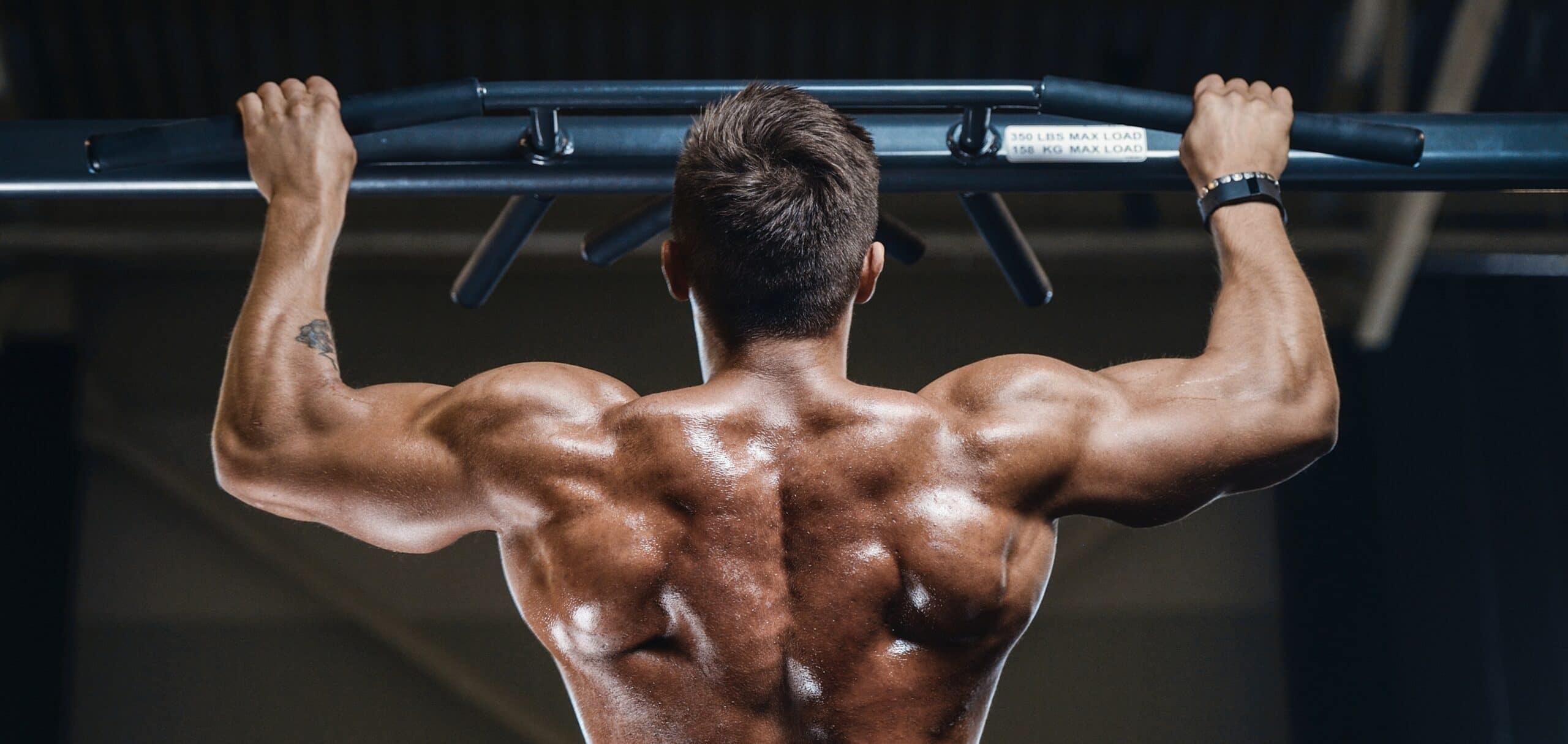 a cosa serve la beta alanina per la palestra e il bodybuilding