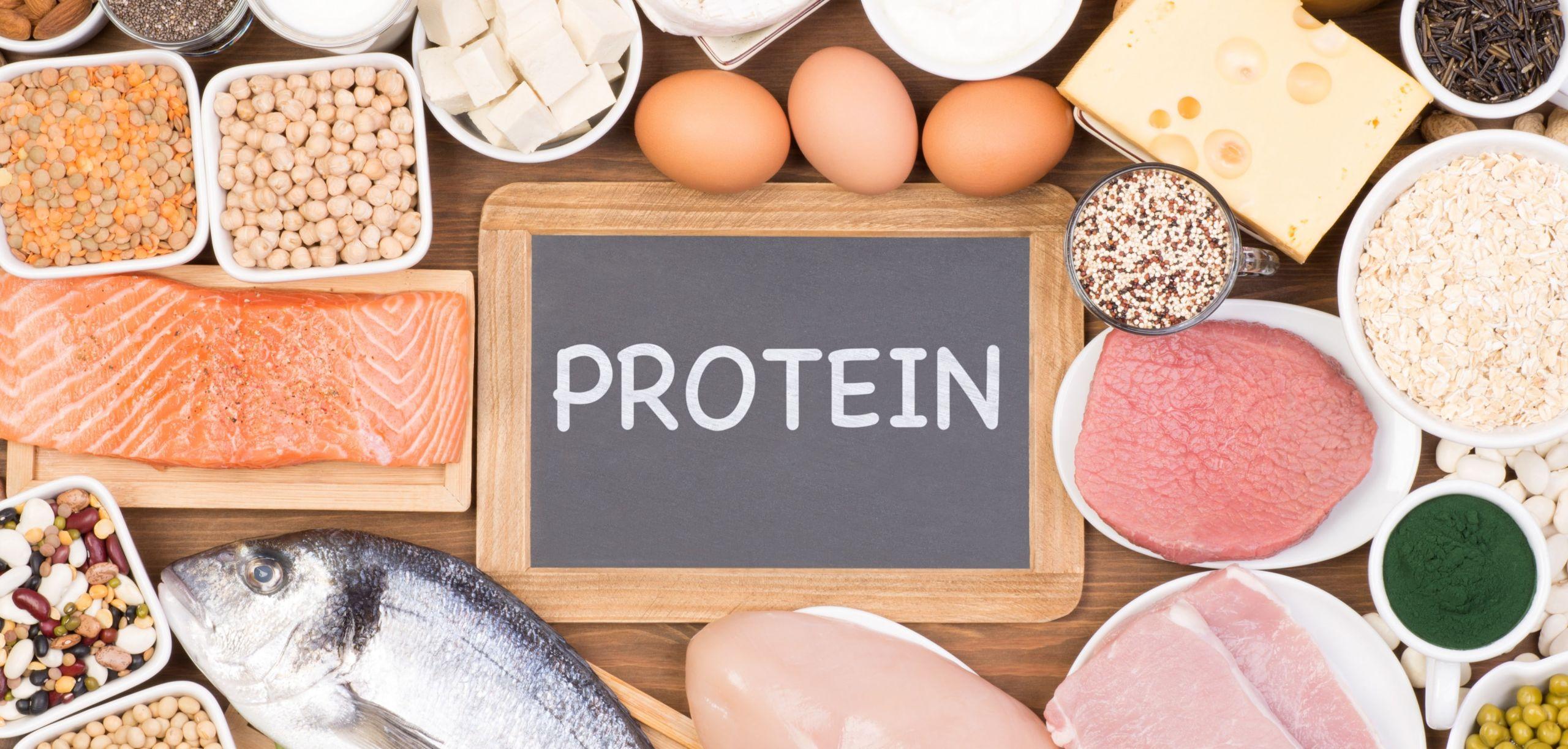Fabbisogno proteico per il bodybuilding