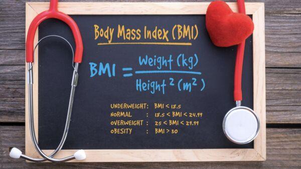 normale grasso corporeo e bmi