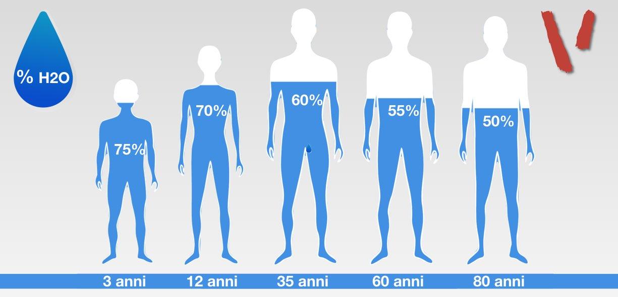 Idratazione corporea età