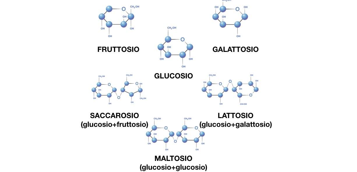 Carboidrati semplici formula chimica