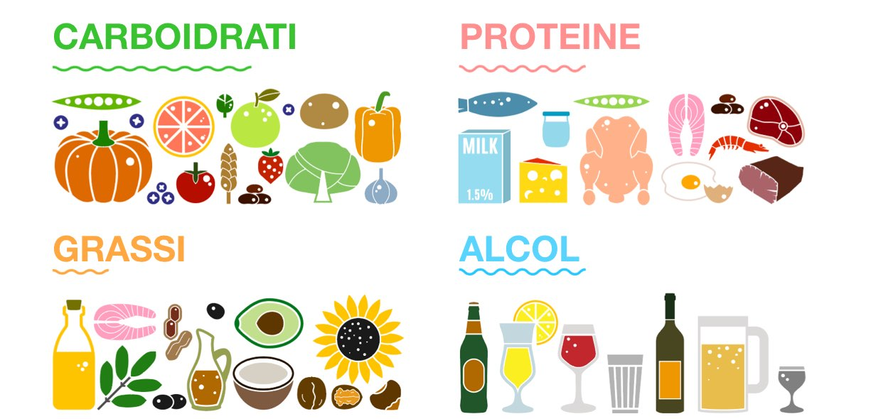 Quali sono i nutrienti