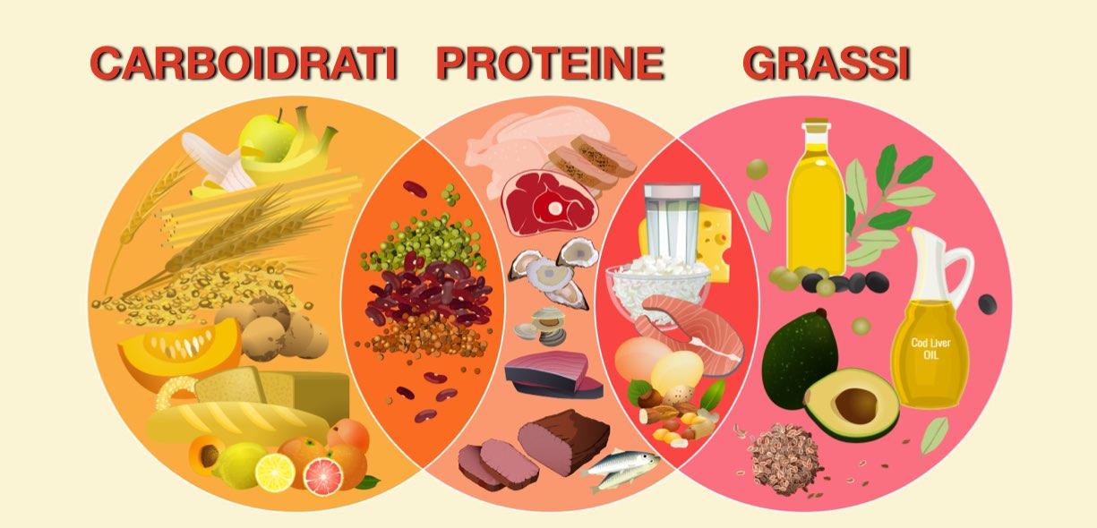 macronutrienti alimenti