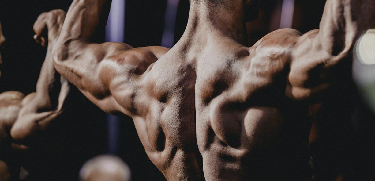 bodybuilding e culturismo
