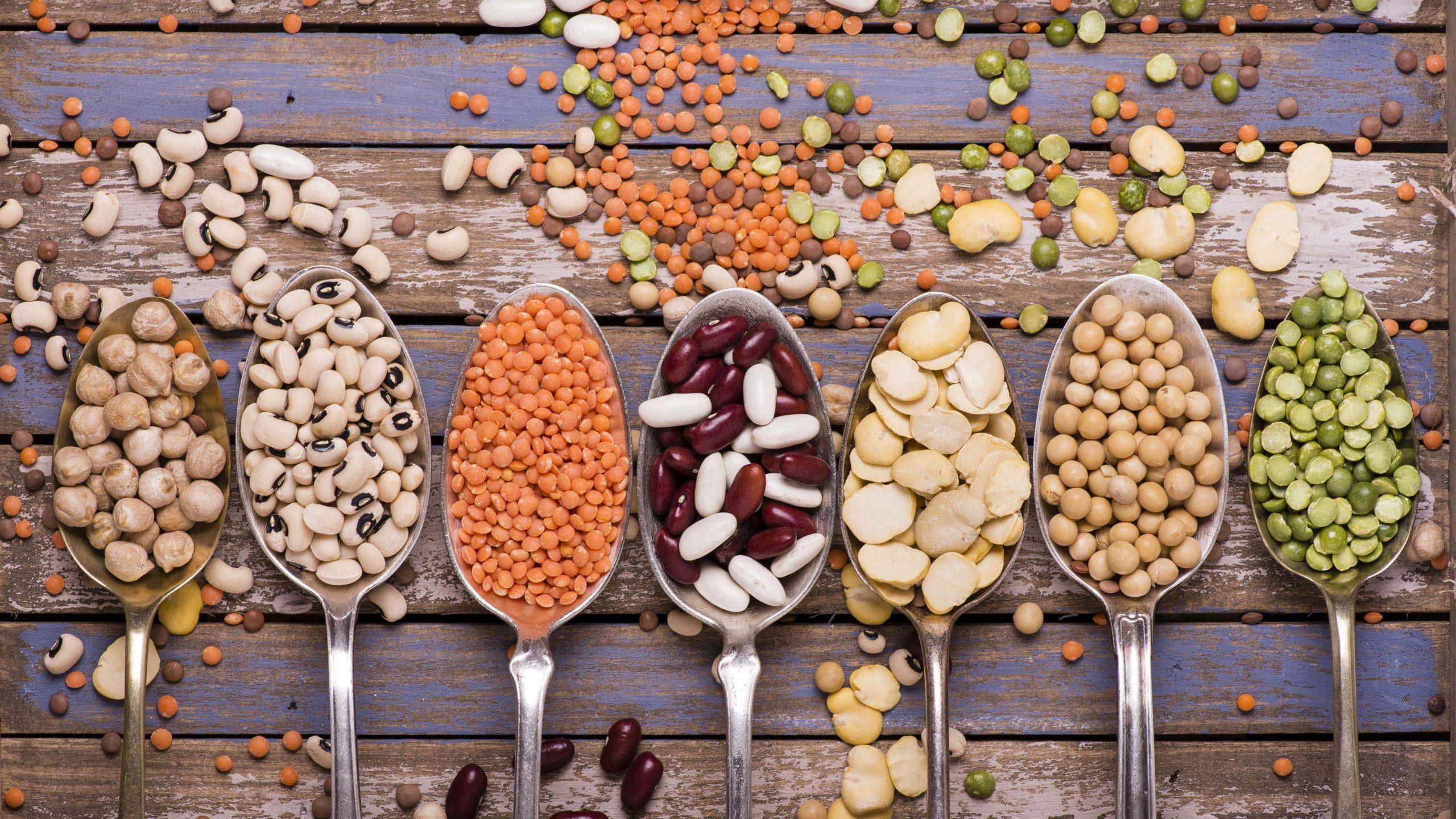 Tipologie di legumi: quali sono e proprietà