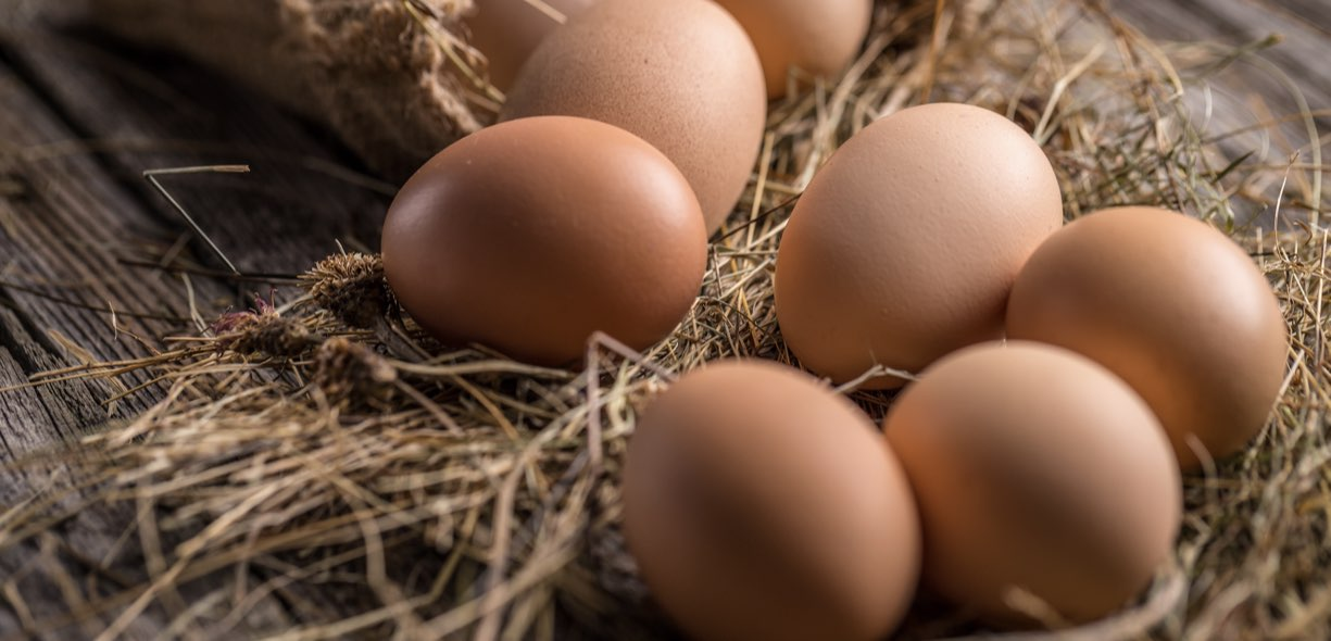 Uova colesterolo