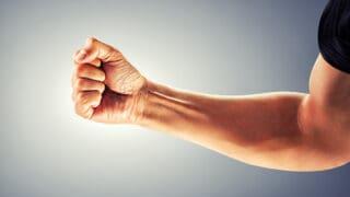 muscoli avambraccio anatomia e funzioni