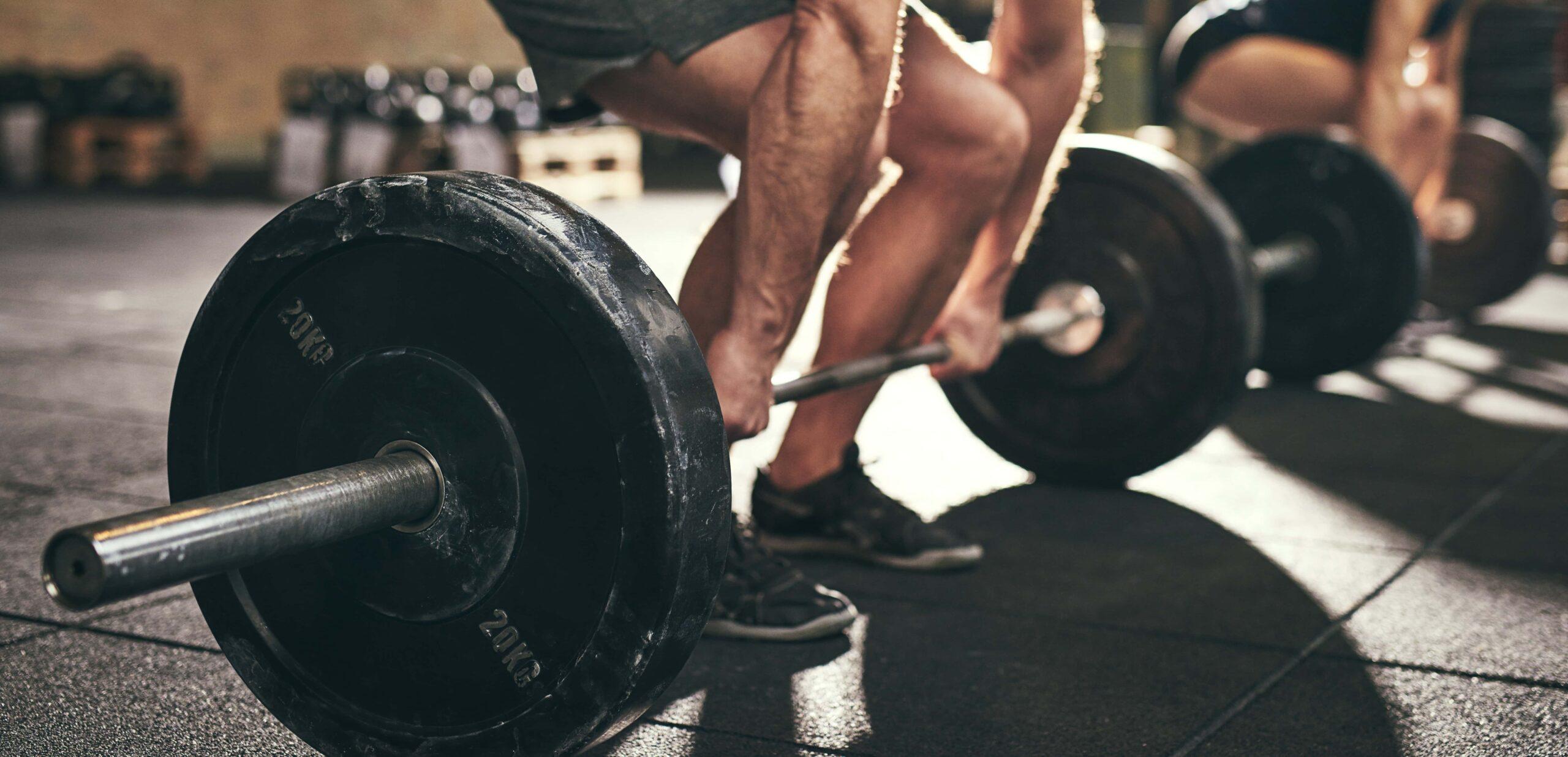 stacchi a gambe tese bodybuilding