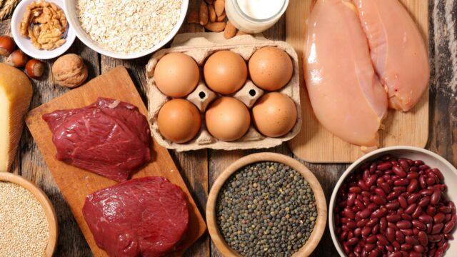 confronto proteine animali e proteine vegetali con differenze