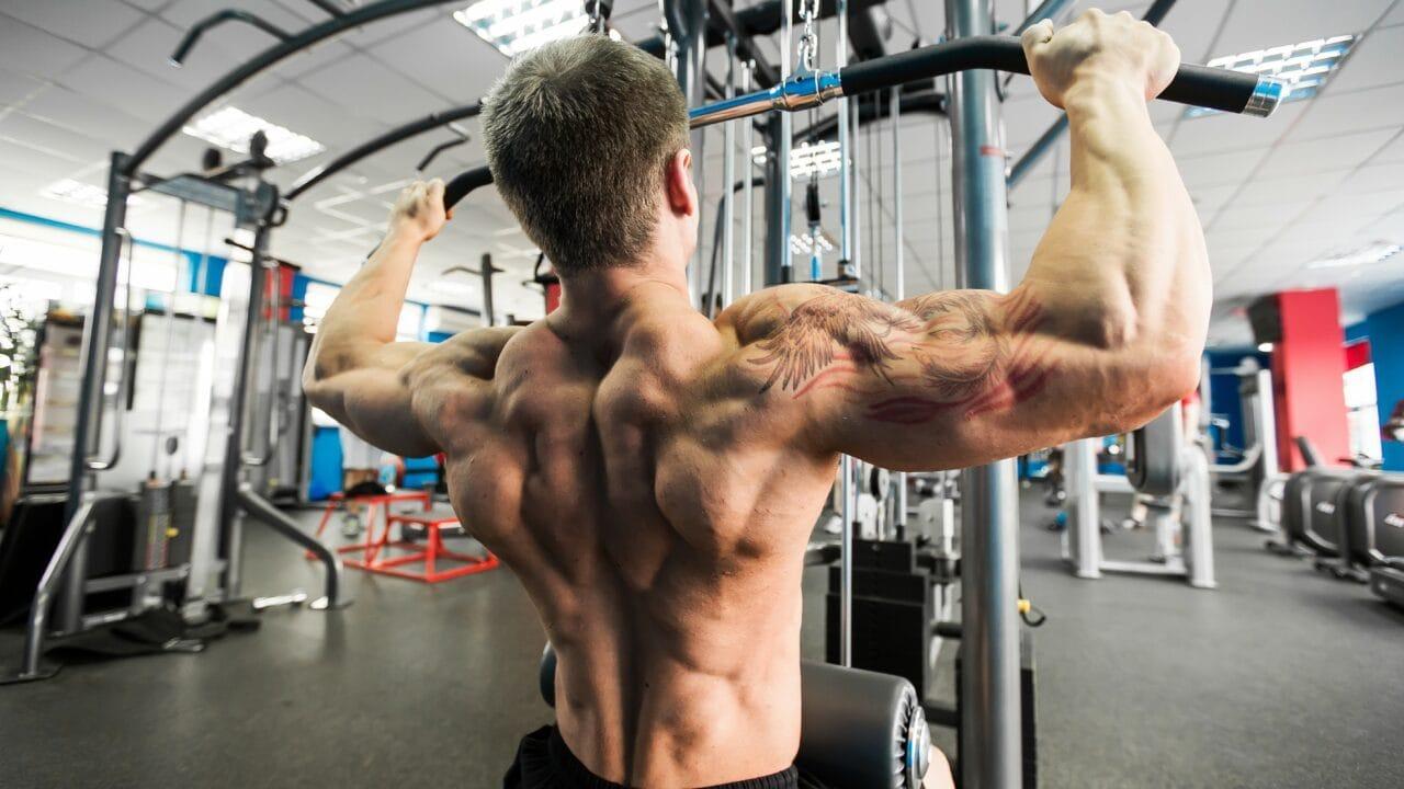 upper back allenamento in palestra e nel bodybuilding
