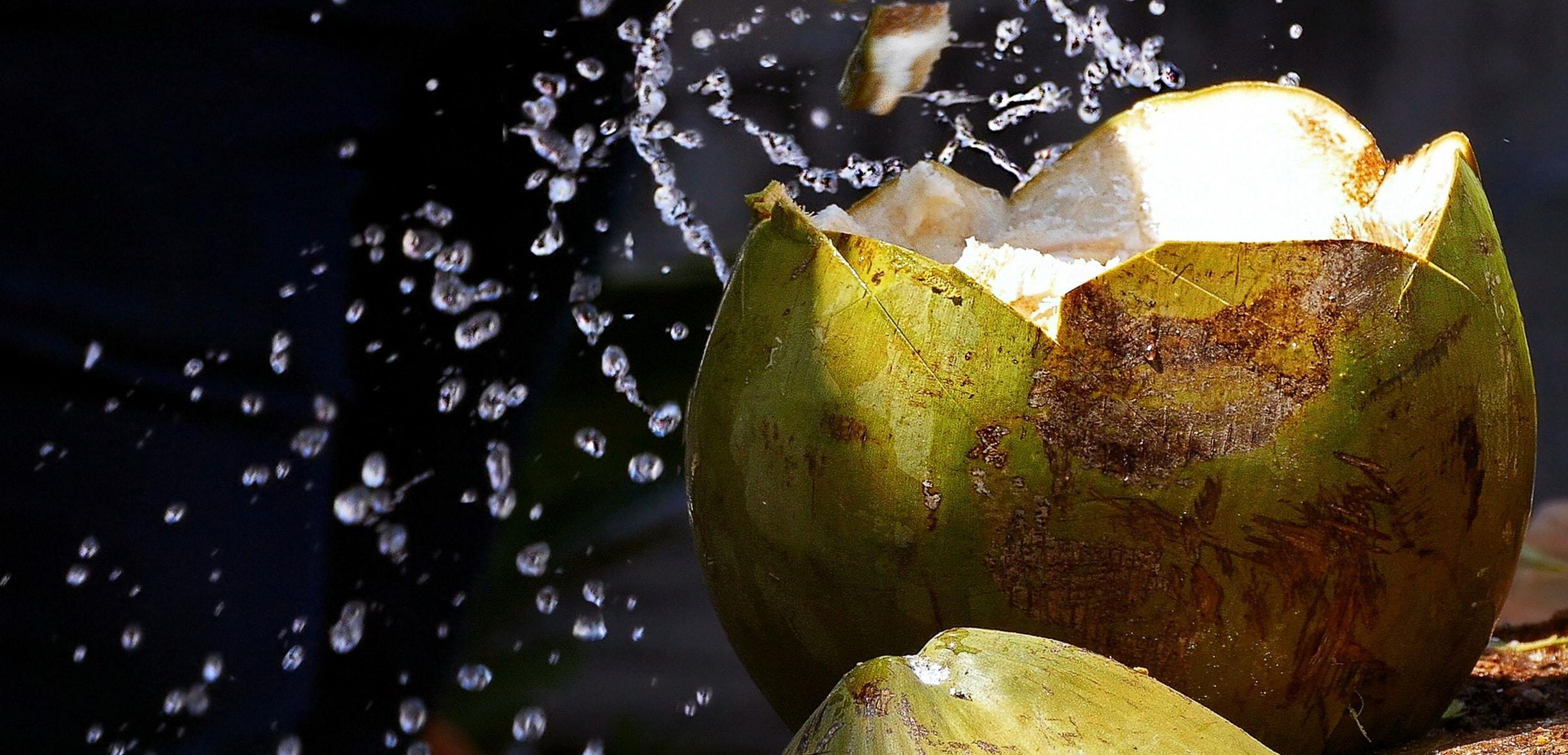 cocco proprietà, benefici e calorie