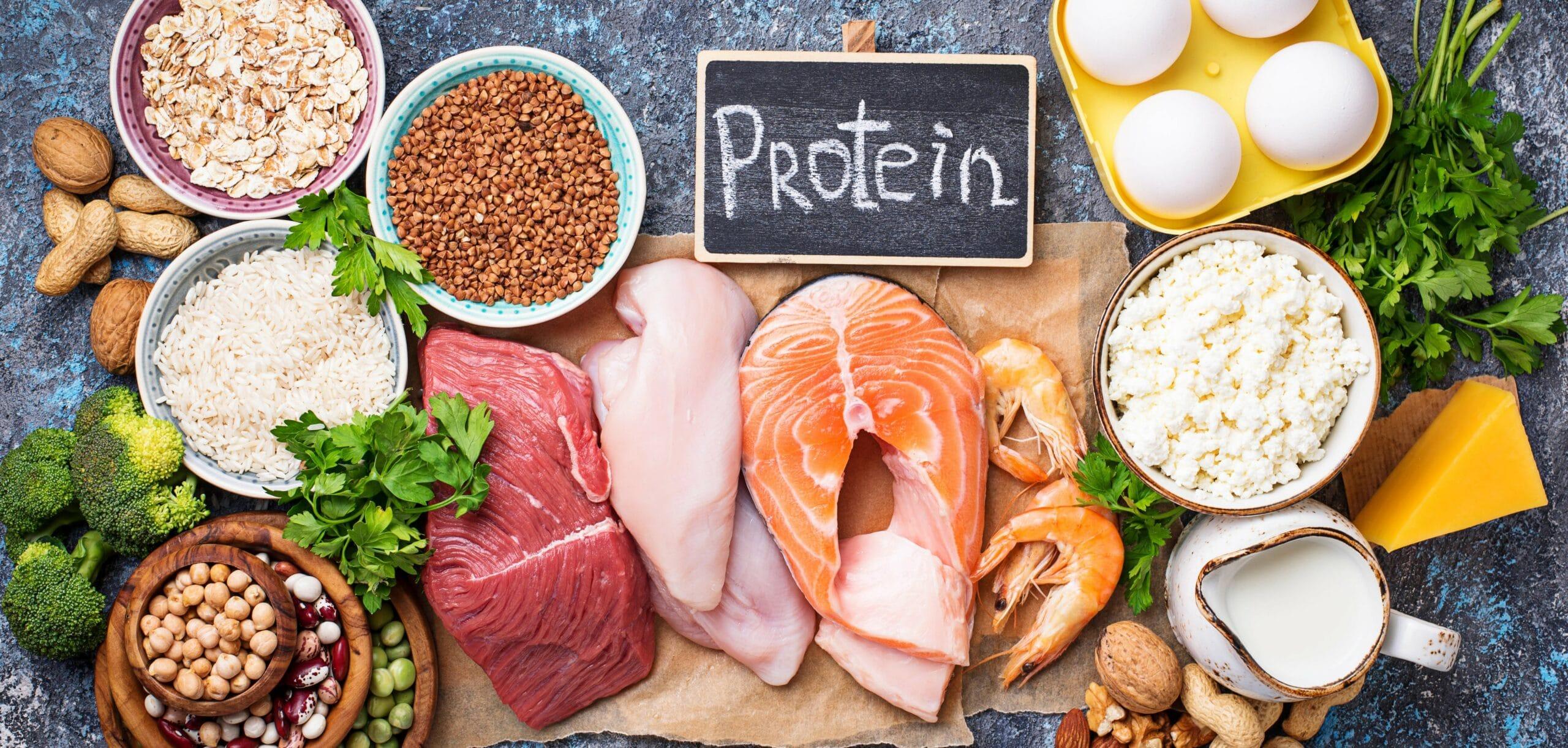aminoacidi (aa) essenziali cosa sono