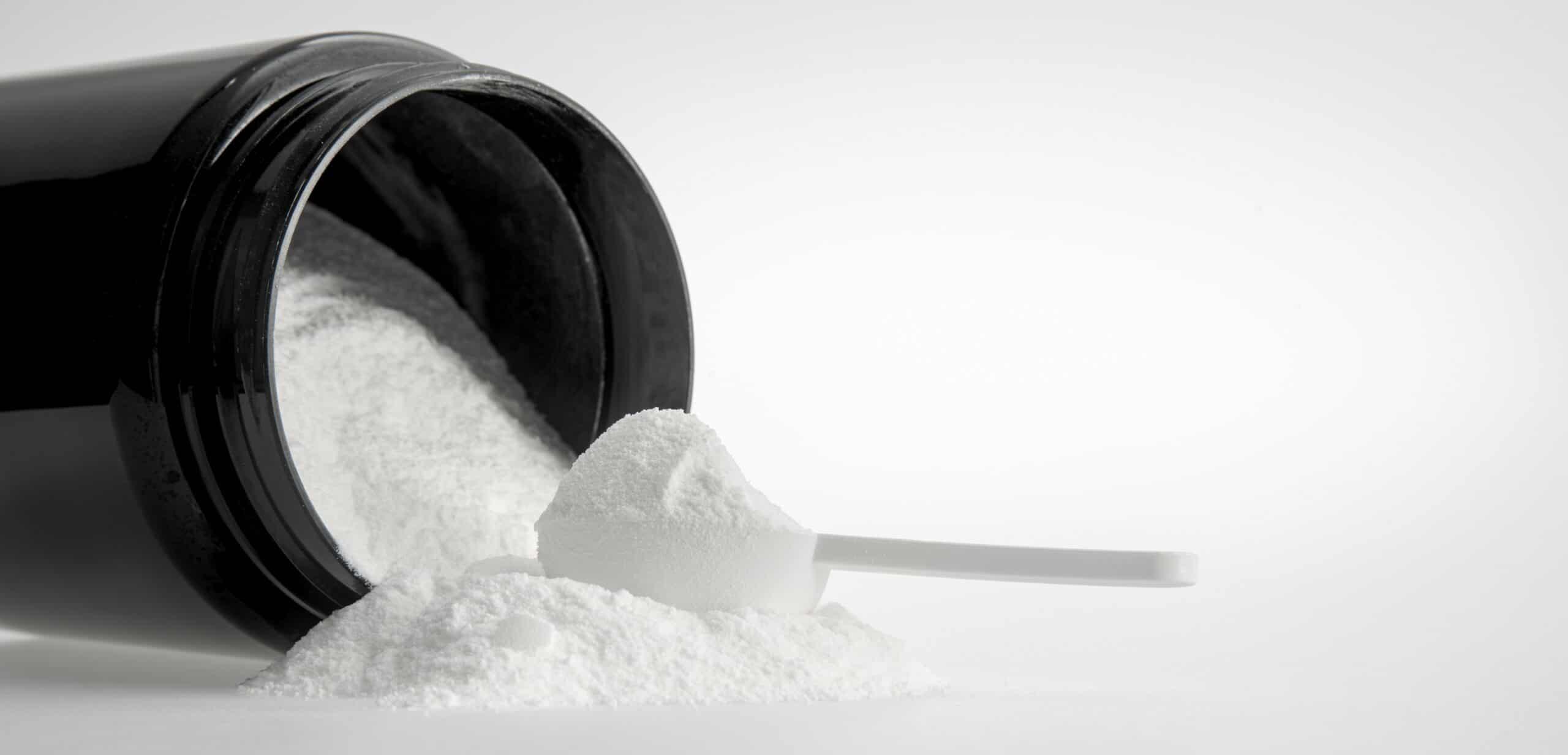 proteine siero del latte in polvere