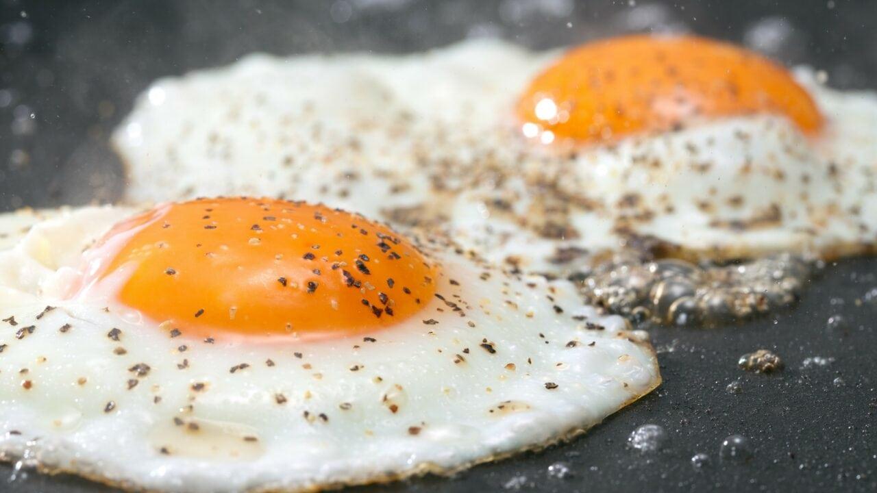 Quante proteine contiene un uovo per la dieta