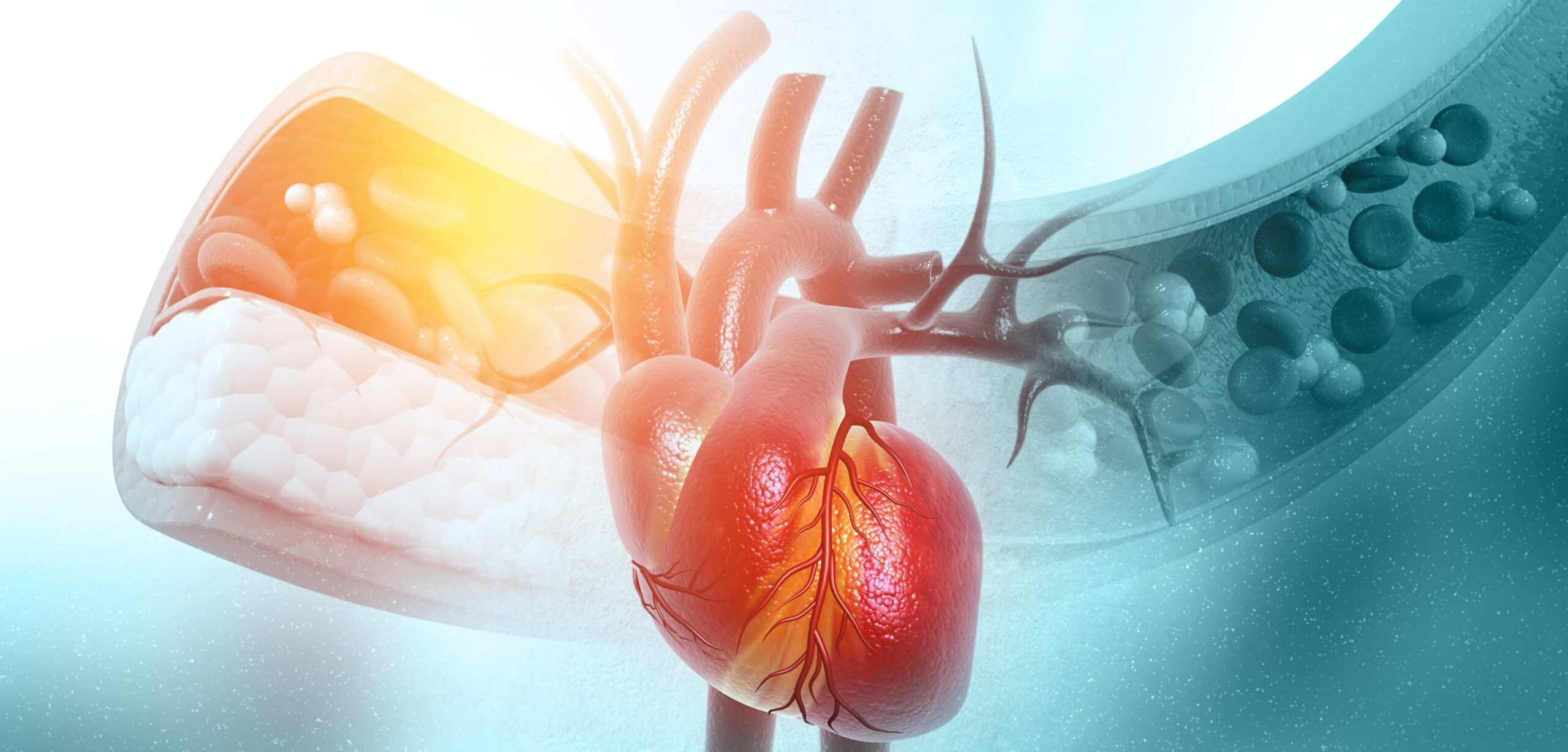 colesterolo e grassi buoni nella dieta