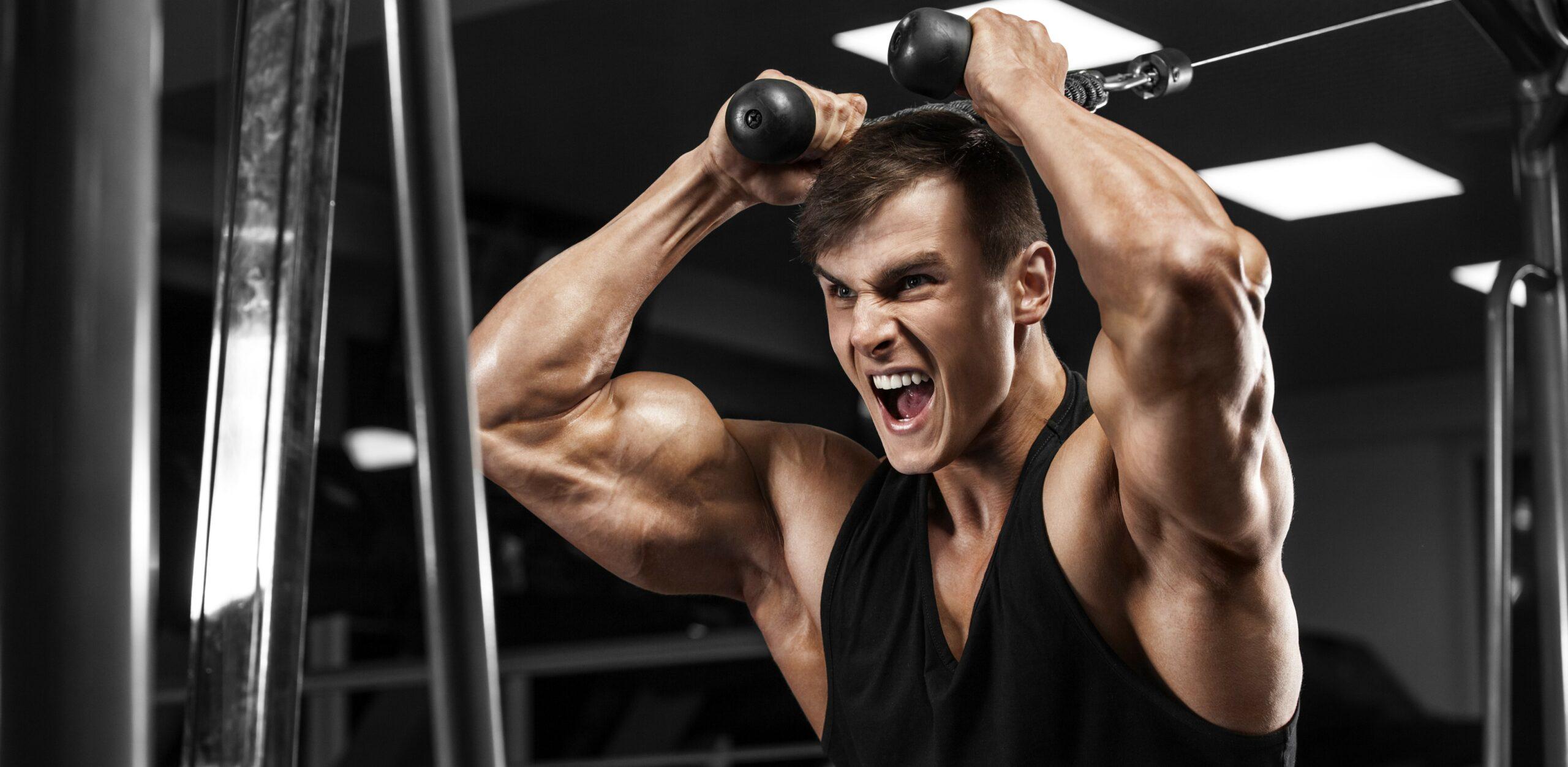 ipertrofia e aumento massa muscolare in palestra