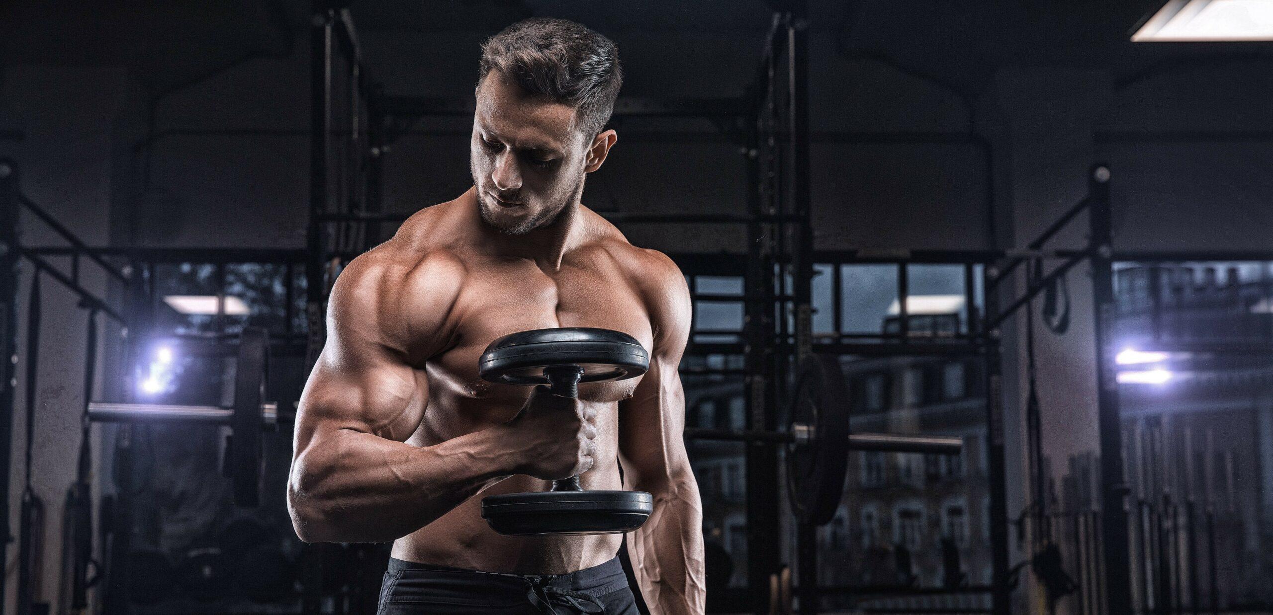 ipertrofia come aumentare la massa muscolare in palestra