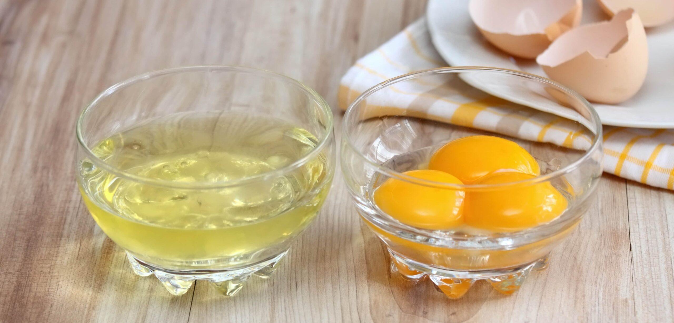 integratore proteine uovo per la palestra