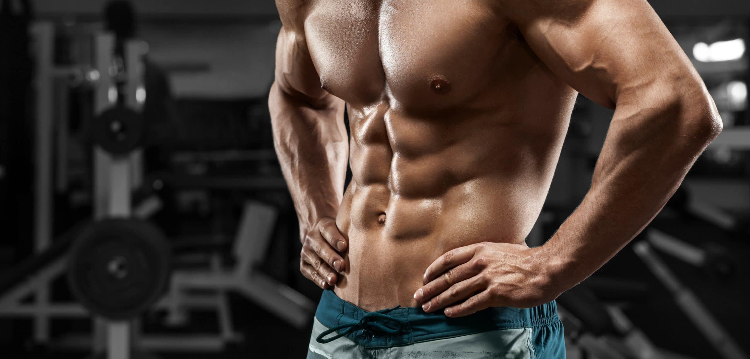 addominali in palestra e nel bodybuilding