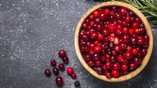 Mirtilli rossi alimentazione