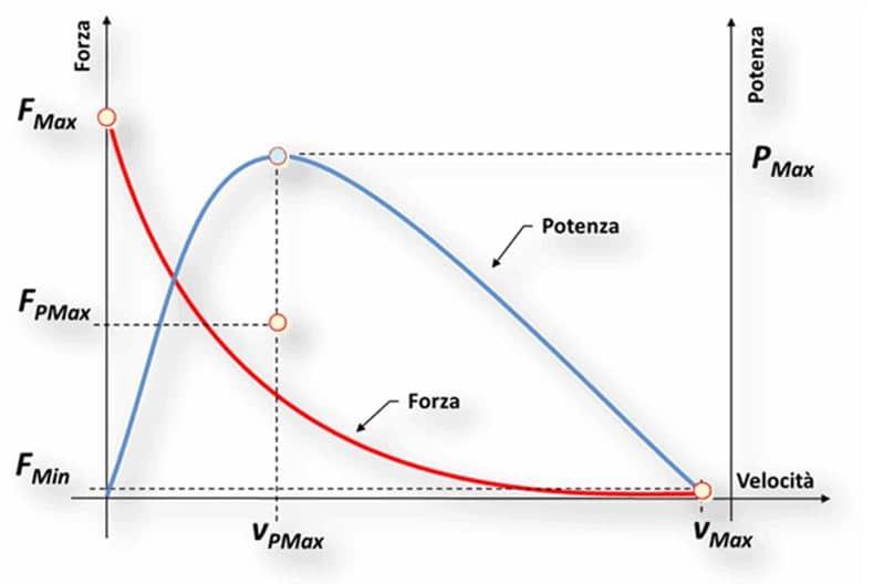 grafico forza potenza