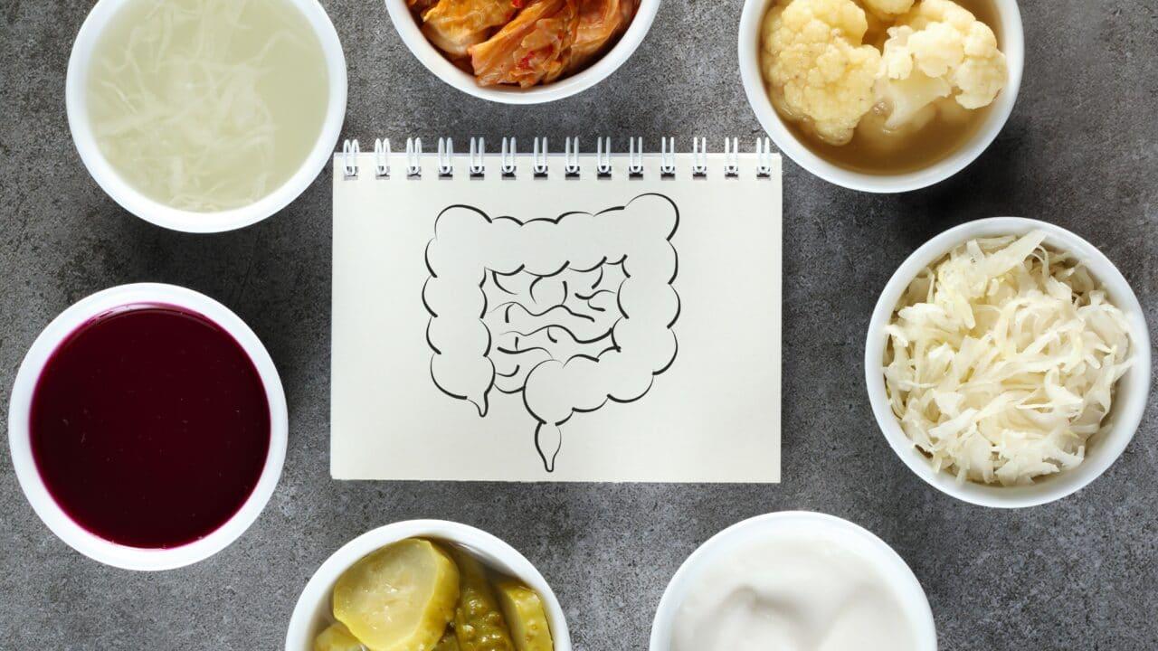 probiotici cosa sono e a cosa servono per la salute