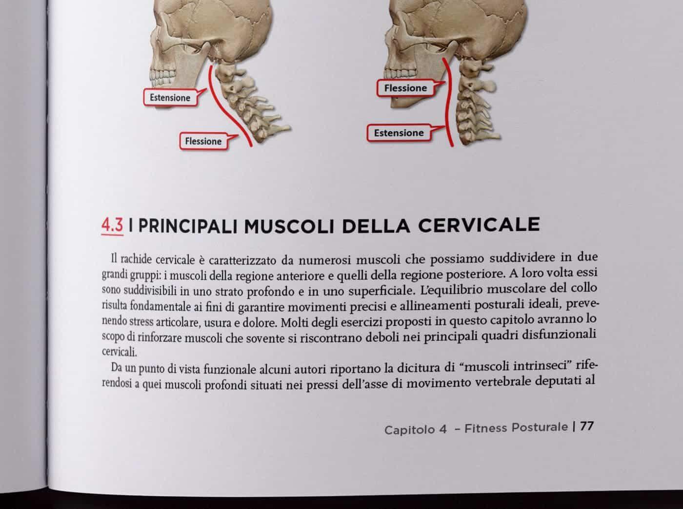 Fitness Posturale Vol 1 Illustrazioni Paolo Evangelista